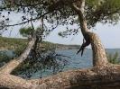 Bucht von Phaselis